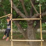 桜の木ののぼり棒用の竹