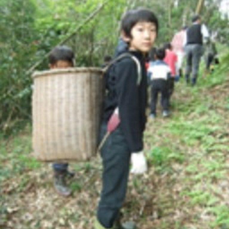地元のお宅の裏山のたけのこ堀にも伺う。背負い籠姿はたけのこ堀の時の上級生。