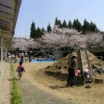 2006.4.4 お花見会の様子