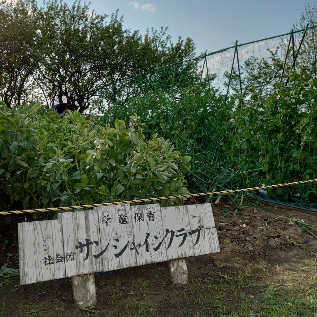 学童・学校・畑ボランティア共用の畑。土を耕すところから収穫したての野菜を食べるところまで、たくさんの楽しみの宝庫。