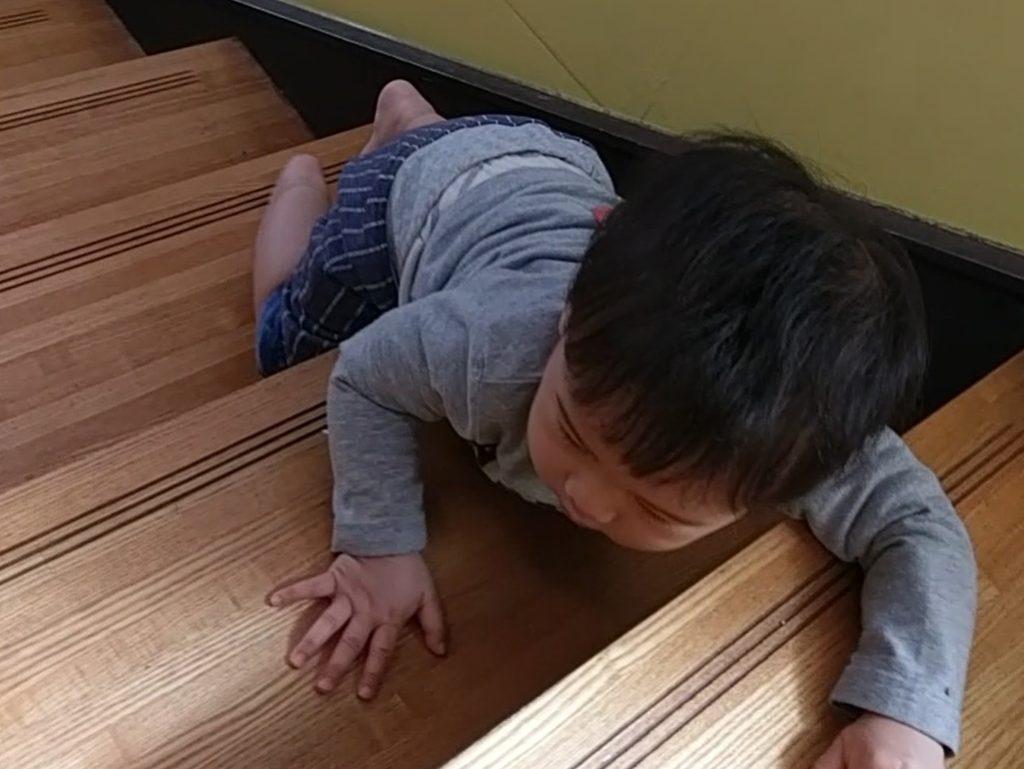 段の幅が広く、時に、子どもたちがはいはいやあんよの練習場となる。